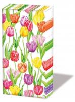 Mouchoirs - Magic Tulips
