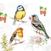 Serwetki 25x25 cm - Birds On Twig