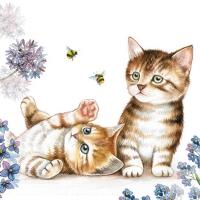 Servilletas 25x25 cm - Cats and Bees