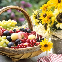Serviettes 25x25 cm - Sunny Fruit