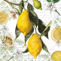 Servilletas 25x25 cm - Lemon