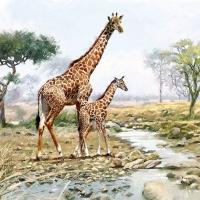 Serviettes 33x33 cm - Giraffes