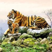 Serviettes 33x33 cm - Tigers