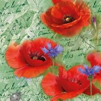 Serviettes 33x33 cm - Painted Poppies Green
