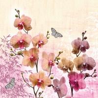 Serviettes 33x33 cm - Orchids Orient