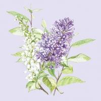 Servietten 33x33 cm - Lilac Lila