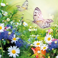 Napkins 33x33 cm - Wildflowers