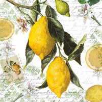 Napkins 33x33 cm - Lemon