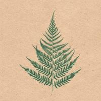 Napkins 33x33 cm - Recycled Fern Leaf