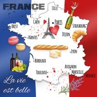 Serwetki 33x33 cm - La Vie Est Belle