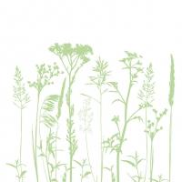 Servilletas 33x33 cm - Herbs And Flowers L.Green