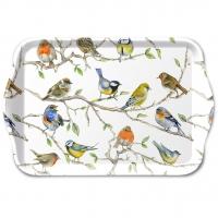 vaschetta -  Birds Meeting