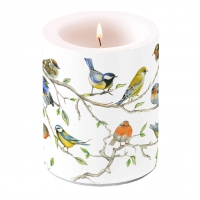 candela decorativa - Birds Meeting