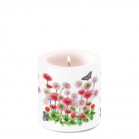 Decorative candle small - Bellis