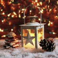 Napkins 33x33 cm - Shining Lantern