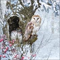 Serviettes 33x33 cm - Barn Owl