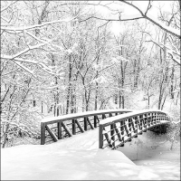 Servilletas 33x33 cm - Snow Bridge