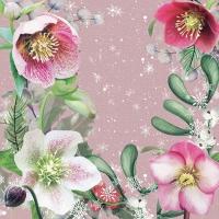 Serviettes 33x33 cm - Helleborus Orientalis Rose