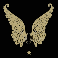 Napkins 33x33 cm - Wings Black/Gold