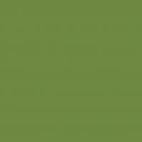 Cellulose napkins 33x33 cm - leaf green
