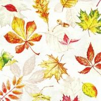 Serviettes 25x25 cm - Scattered Foliage