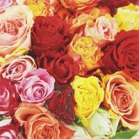 Serviettes 33x33 cm - Carpet of Roses