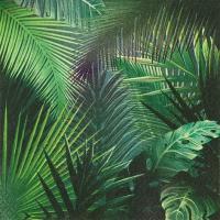 Serviettes 33x33 cm - Rain Forest