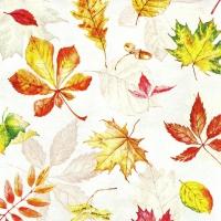 Serviettes 33x33 cm - Scattered Foliage