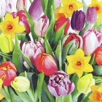 Serviettes 33x33 cm - Bouquet of Tulips