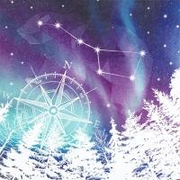 Serviettes 33x33 cm - Northern Lights