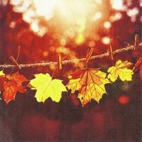 Serviettes 33x33 cm - Sunny Fall