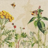 Serviettes 33x33 cm - Wild Flowers