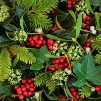 Napkins 33x33 cm - Berries and Plants