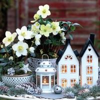 Napkins 33x33 cm - Lovely Decorations
