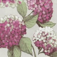 Napkins 24x24 cm - Hortensia