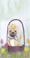 Servilletas de buffet - BUNNY DOGS