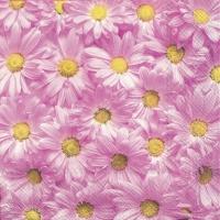 Napkins 25x25 cm - SPRING FOREVER pink