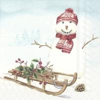 Napkins 25x25 cm - FRANK SNOW