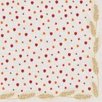 Napkins 25x25 cm - THANKFUL FOR linen