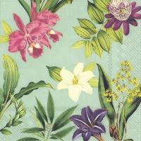 Serviettes 33x33 cm - FLOWERS OF PARADISE mint