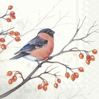 Serviettes 33x33 cm - DREAMING WINTER BIRD