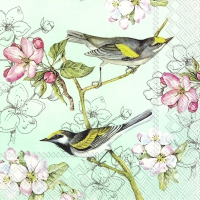 Napkins 33x33 cm - BIRDS SYMPHONY green