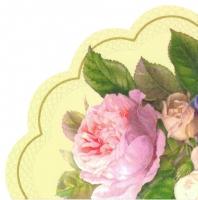 Napkins - Round - FAIRY ROSE cream