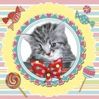Serwetki 33x33 cm - Sweet Kitten