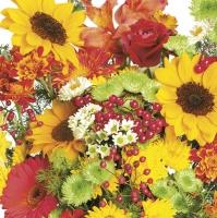 Serviettes 33x33 cm - Rich Autumn Bouquet