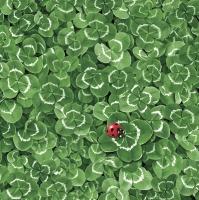 Serviettes 33x33 cm - Clover Background with Ladybug