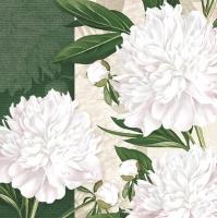 Napkins 33x33 cm - Dewed White Peonies