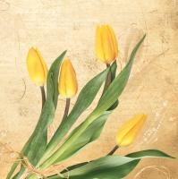 Napkins 33x33 cm - Bunch of Yellow Tulips