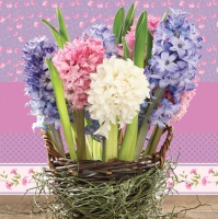 Napkins 33x33 cm - Hyacinths in a Basket