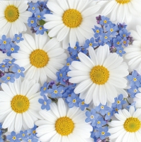 Napkins 33x33 cm - Daisies and Forget-me-nots